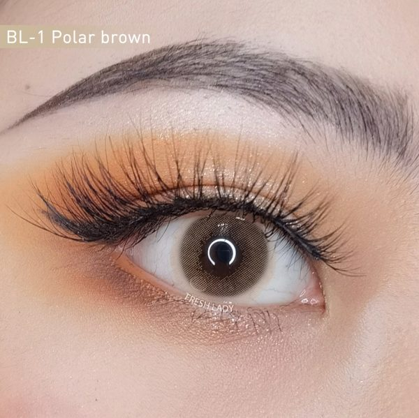 Polar Lights/ Brown contact lenses BL-1